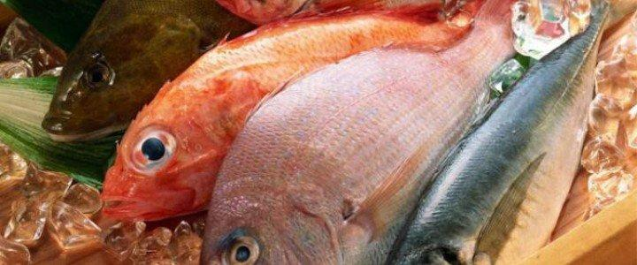 Curso gratis Manipulador de Alimentos. Pescados y Derivados online para trabajadores y empresas