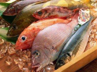 Manipulador de Alimentos. Pescados y Derivados