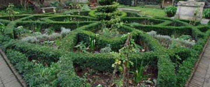 Curso gratis Mantenimiento y mejora de elementos no vegetales. AGAO0208 - Instalación y mantenimiento de jardines y zonas verdes online para trabajadores y empresas