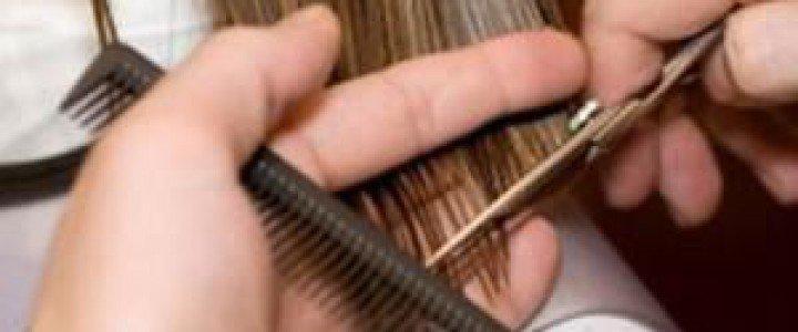 Aplicación de cosméticos para los cambios de color del cabello. IMPQ0108 - Servicios auxiliares de peluquería