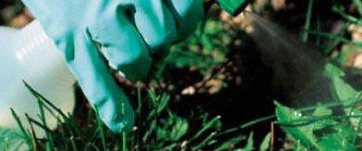 Aplicación de métodos de control fitosanitarios en plantas, suelo e instalaciones. AGAO0208 - Instalación y mantenimiento de jardines y zonas verdes