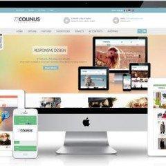 Máster Executive en Diseño Web con Joomla+SEO