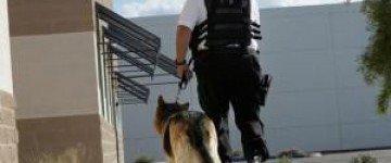 MF0080_2 Vigilancia y Protección en Seguridad Privada