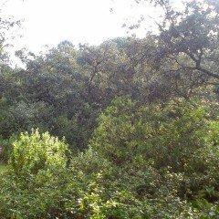 MF0083_3 Actividades de Uso Público y Protección del Medio Natural