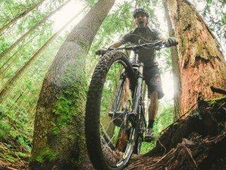 MF0508_2 Mantenimiento y Conducción de Bicicletas