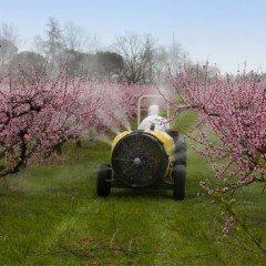 MF0518_1 Operaciones Auxiliares de Riego, Abonado y Aplicación de Tratamientos en Cultivos Agrícolas