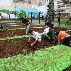 MF0522_1 Operaciones Básicas para el Mantenimiento de Jardines, Parques y Zonas Verdes