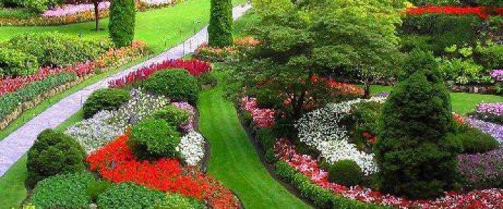 MF0532_2 Mantenimiento y Mejora de Jardines y Zonas Verdes