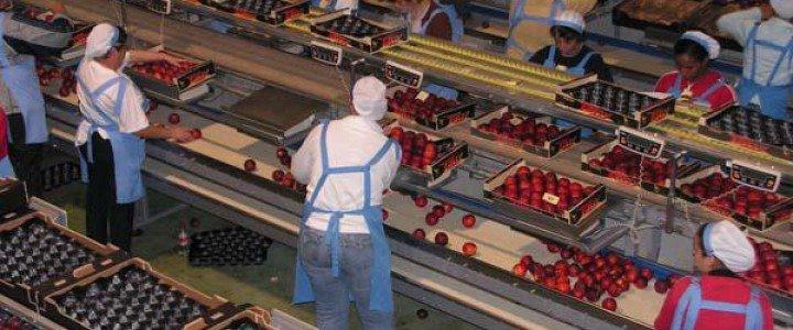 MF0556_3 Gestión del Almacén y Comercialización en la Industria Alimentaria