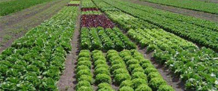 Curso gratis MF0717_2 Manejo del Suelo, Operaciones de Cultivo y Recolección en Explotaciones Ecológicas online para trabajadores y empresas