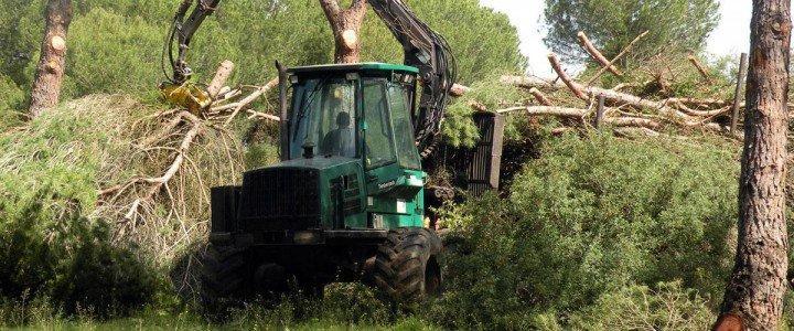 MF0728_3 Gestión de la Repoblación Forestal y Corrección Hidrológico-Forestal