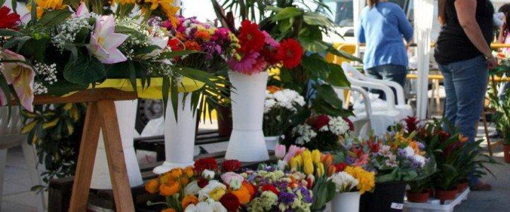 MF1114_1 Trabajos Auxiliares en la Elaboración de Composiciones con Flores y Plantas