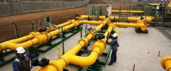 Curso gratis MF1205_3 Organización y Control del Mantenimiento de Redes de Gas online para trabajadores y empresas