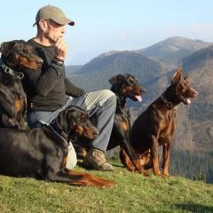 MF1756_3 Adiestramiento de Perros para Defensa y Vigilancia