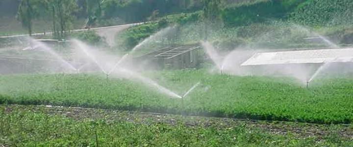 Curso gratis Operaciones culturales, riego y fertilización. AGAC0108 - Cultivos herbáceos online para trabajadores y empresas