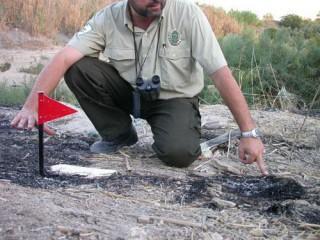 Perito Judicial en la Investigación de Causas de Incendios