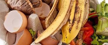 Residuos domésticos. Definiciones y gestión