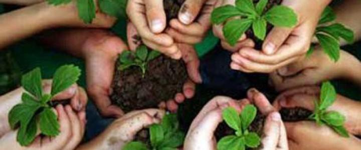 Curso gratis Técnico en Educación Ambiental online para trabajadores y empresas