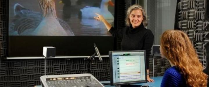 Curso gratis Técnico en Postproducción de Sonido en Cine online para trabajadores y empresas