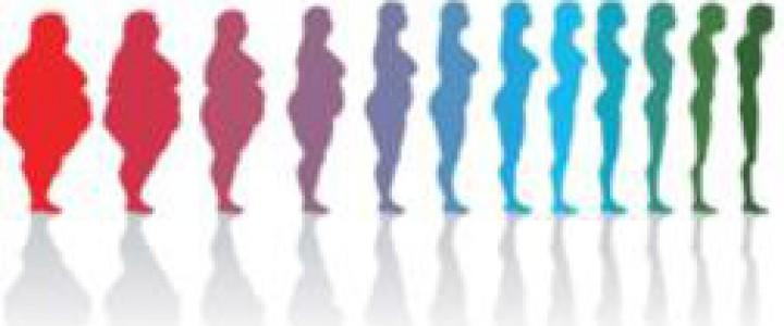 Curso gratis Certificación en Tratamiento de los Trastornos Alimentarios para Titulados Universitarios en Psicología online para trabajadores y empresas