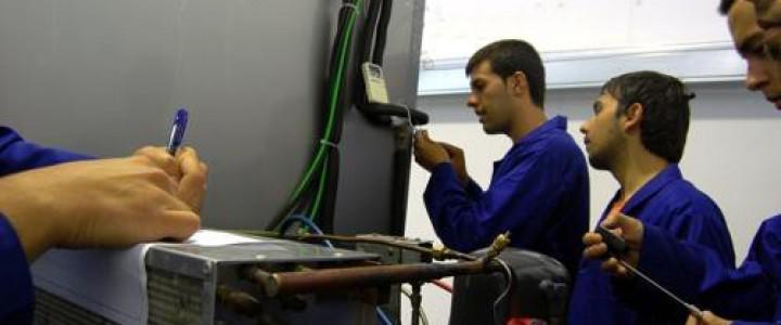 Técnico Profesional en Instalaciones Frigoríficas. Mantenimiento Preventivo y Correctivo