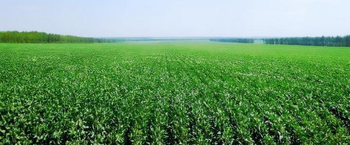Curso gratis UF0002 Preparación del Terreno para Instalación de Infraestructuras, Siembra y Plantación de Cultivos Herbáceos online para trabajadores y empresas