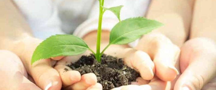 Curso gratis UF0022 Mantenimiento y Mejora de Elementos No Vegetales online para trabajadores y empresas