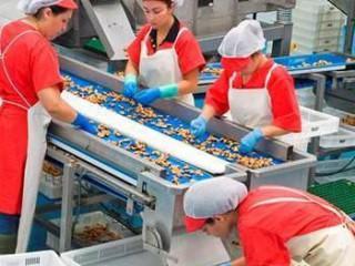 UF0698 Manejo de Instalaciones para la Elaboración de Productos Alimentarios