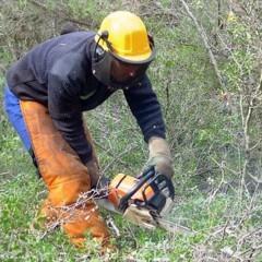 UF0700 Trabajos de Infraestructuras Forestales