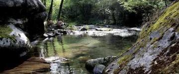 UF1262 Procedimientos de Gestión en el Control y Protección del Medio Natural