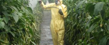 UF1504 Preparación, Transporte y Almacenamiento de Biocidas y Productos Fitosanitarios