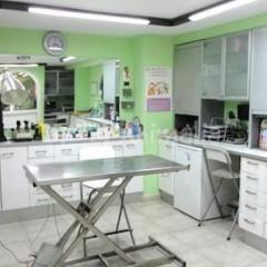 MF1587_3 Consulta Clínica Veterinaria
