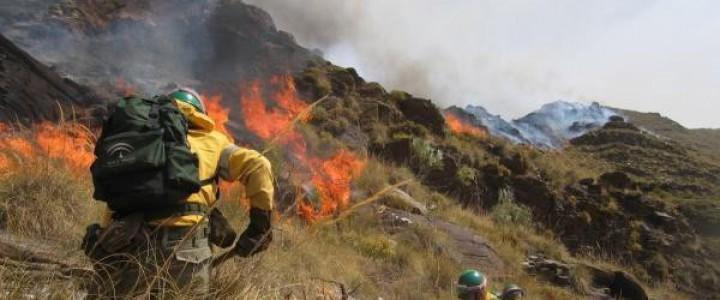 Curso gratis UF2347 Operaciones de Extinción de Incendios Forestales online para trabajadores y empresas