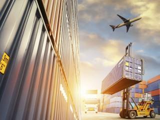 Perito Judicial en Comercio Internacional