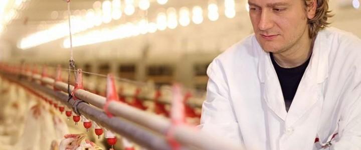 Curso gratis Perito Judicial en Veterinaria online para trabajadores y empresas