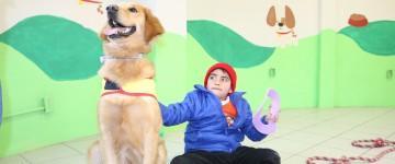Monitor en Terapia Asistida con Perros
