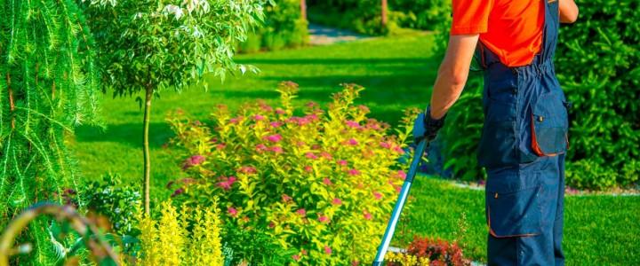Curso gratis Técnico de Mantenimiento. Especialidad Jardinería online para trabajadores y empresas