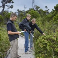 AGAR0209 Actividades Auxiliares en Aprovechamientos Forestales