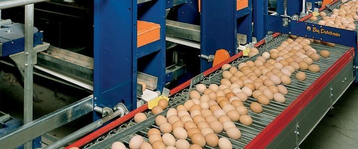 Curso gratis UF0017 Proceso de Fecundación y Operaciones de Recepción y Manejo de Aves y Huevos online para trabajadores y empresas