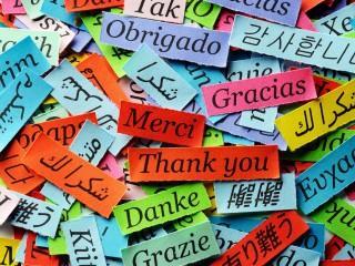 UF1785 Lengua Extranjera Oral y Escrita, distinta del Inglés, en el Comercio Internacional (en Francés)