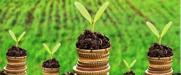 UF0737 Recursos Naturales y Sociales para el Desarrollo de la Interpretación y Educación Ambiental