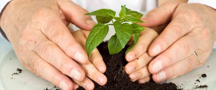Curso gratis UF0738 Educación Ambiental y Ámbitos de Aplicación online para trabajadores y empresas