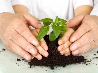 UF0738 Educación Ambiental y Ámbitos de Aplicación