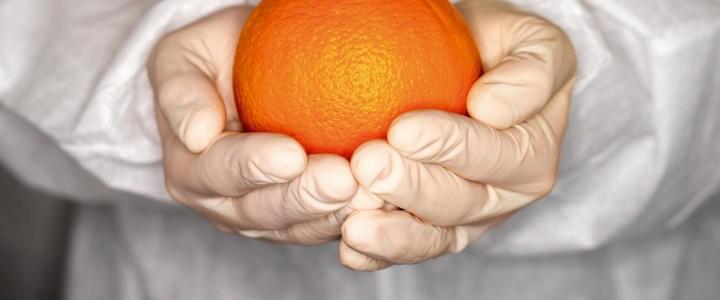 Curso gratis Trazabilidad y seguridad alimentaria online para trabajadores y empresas