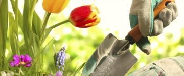 UF0023 Programación y Organización de los Trabajos de Jardinería y Restauración del Paisaje