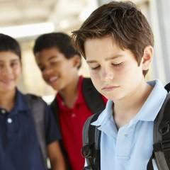Curso de Prevención e Intervención en Casos de Acoso Escolar