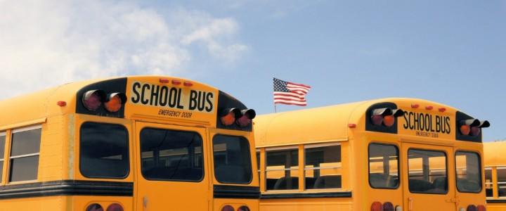 Monitor de Transporte Escolar
