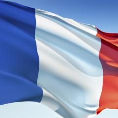 Curso Intensivo Francés C1. Nivel Oficial Consejo Europeo