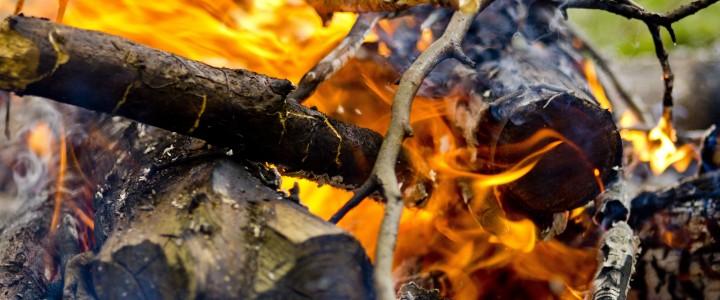 Curso Práctico de los Delitos de Incendio y la Investigación de sus Causas