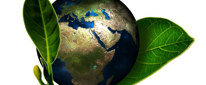 Manual Online de Empresa y Medio Ambiente: La Responsabilidad Social Corporativa